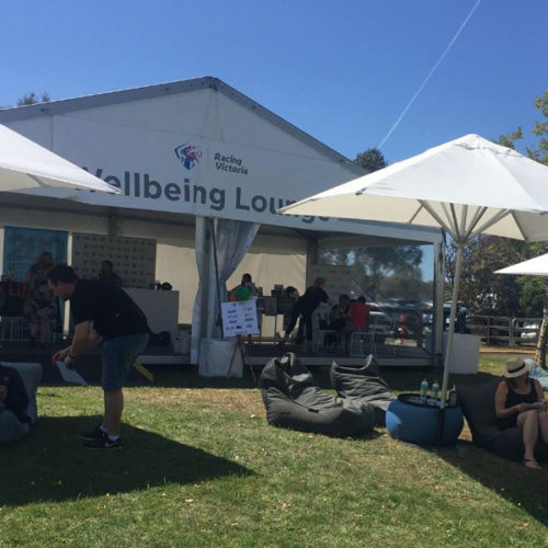 well being lounge was added on the Inglis Melbourne premier yearling sale event and they have bean bags to make the attendees relax